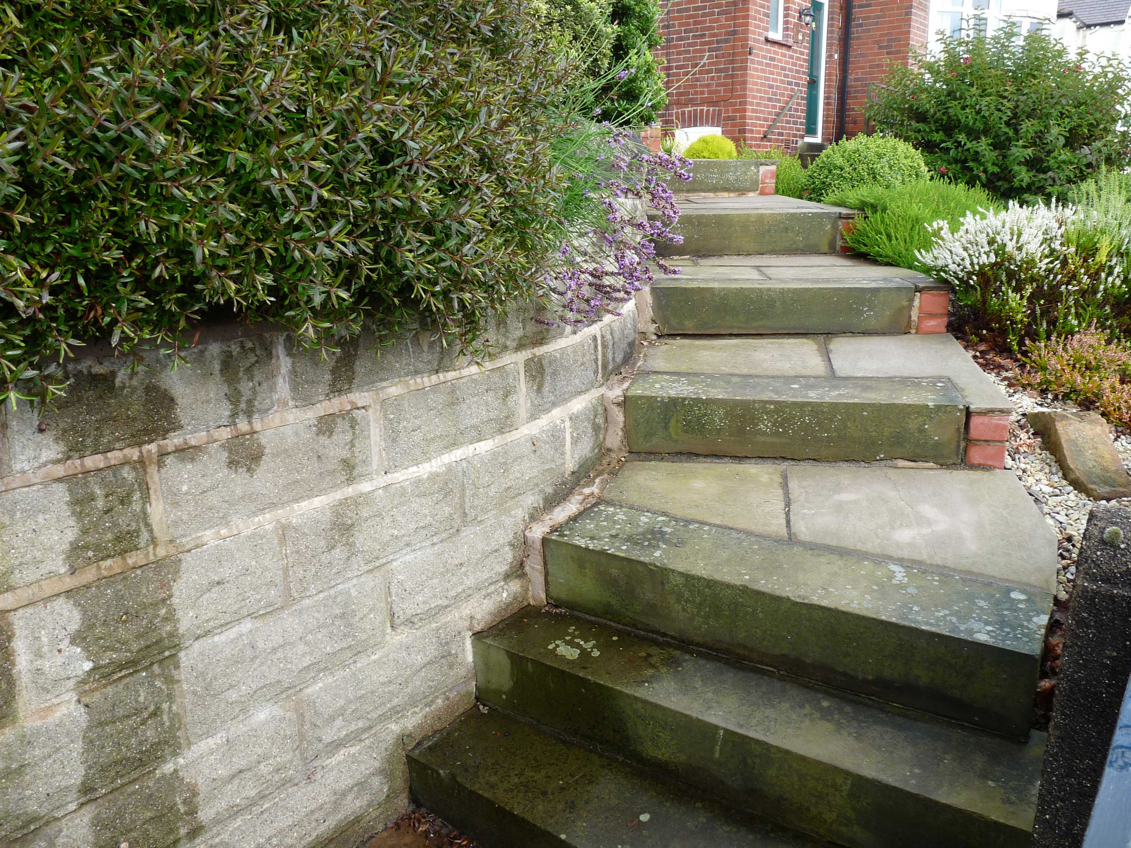 Paving Steps to house